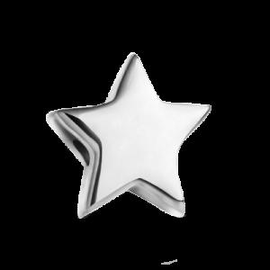 Шармик «Звездочка»