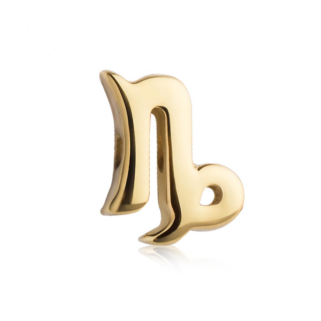 Знак зодиака «Козерог»